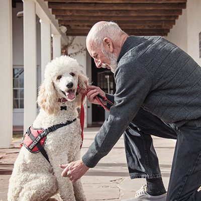 Idaho CE:Assistance Animals And Fair Housing